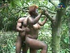 คลิปโป๊ แนวแปลก คนป่าเย็ดกันบนต้นไม้ ขย่มทีกิ่งสะเทือนแทบหัก
